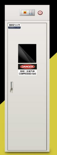 TXP gas cylinder cabinet 1